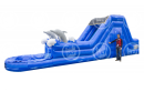 Rent Dolphin Water Slide