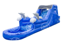 Dolphin Water Slide Rental