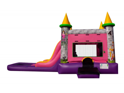 bounce house waterslide, wet and dry combo
